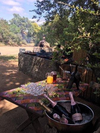 Timbavati Private Nature Reserve, Sør-Afrika: photo3.jpg