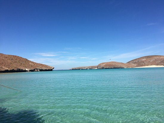 Todos Santos, Mexiko: Beach and boat experience of a lifetime