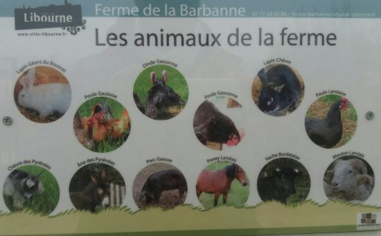 Libourne, France: Ferme de la Barbanne
