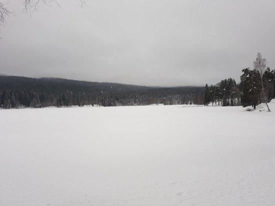 Sognsvann Lake: 20180103_115759_large.jpg