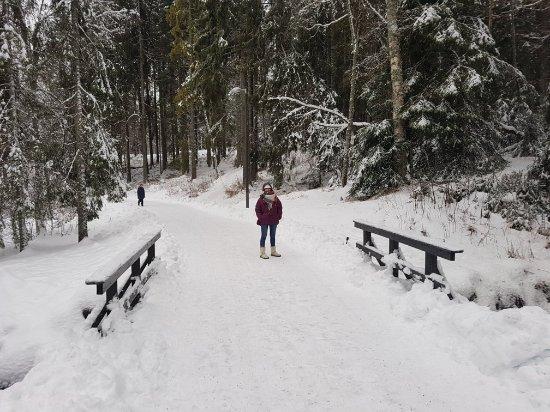 Sognsvann Lake: 20180103_113032_large.jpg