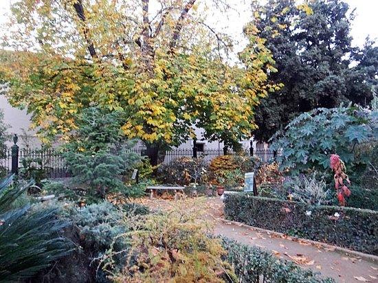 Foto de jardin botanico de la universidad de granada for Jardin botanico granada precio