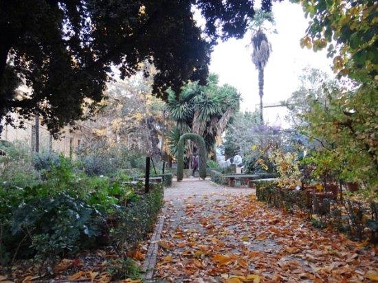 Jardin botanico obr zok jardin botanico de la for Jardin botanico granada precio