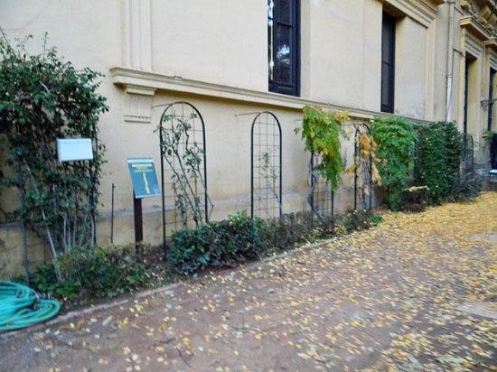 Jardin botanico fotograf a de jardin botanico de la for Jardin botanico de granada