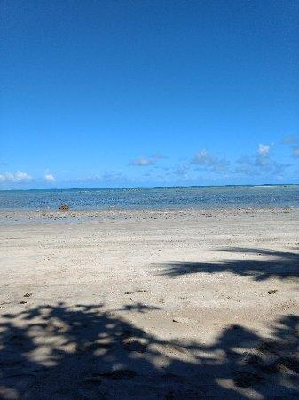 Japaratinga Beach : IMG_20180106_134414561_large.jpg