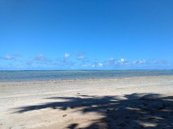 Japaratinga Beach : IMG_20180106_134453311_large.jpg