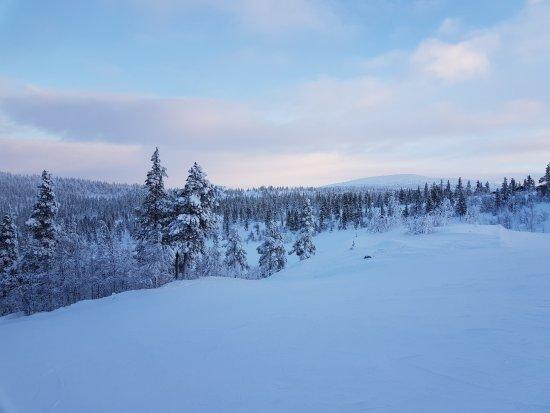Rendalen Municipality, Norvège: Renåfjellet
