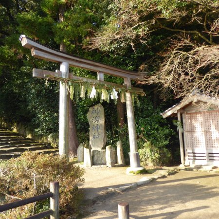 Kamosu Shrine: photo0.jpg