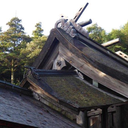 Kamosu Shrine: photo2.jpg