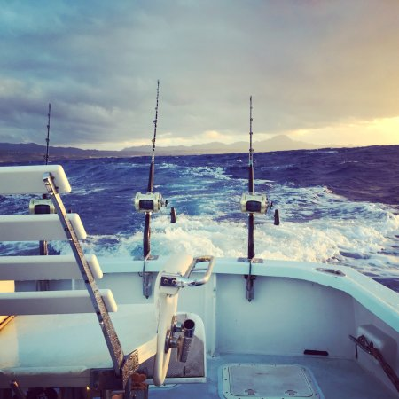 Deep Sea Fishing Kauai: Good ride. No big fish or small fish. But they were nice and you could tell they were trying. Ha