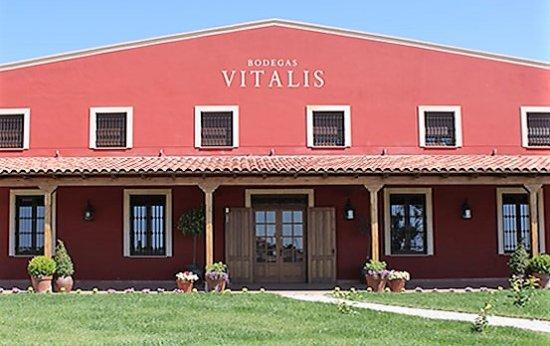 Bodega Vitalis