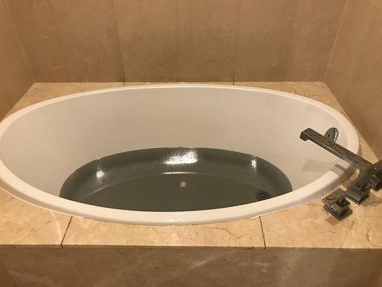 Black Tub Christy Canyon pipe
