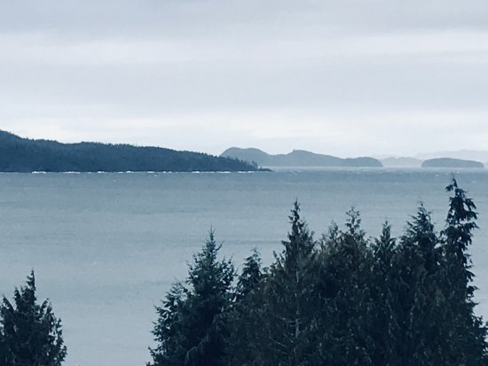 Port Hardy, Canada: Stormy days are still beautiful in Bear Cove !