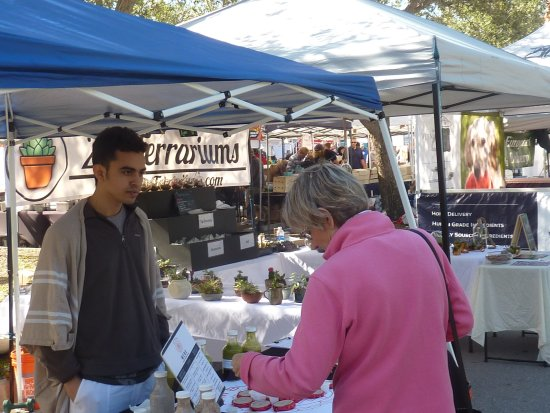 Palm Beach Gardens Greenmarket Foto Di The Gardens Greenmarket Palm Beach Gardens Tripadvisor