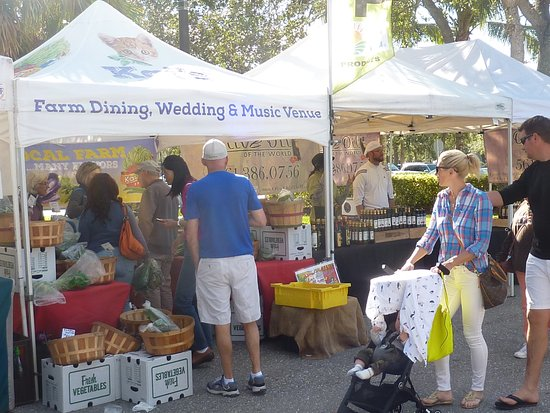 Palm Beach Gardens Greenmarket Obr Zek Za Zen The Gardens Greenmarket Palm Beach Gardens