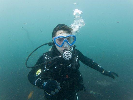 La Jolla Dive: Diver Steven