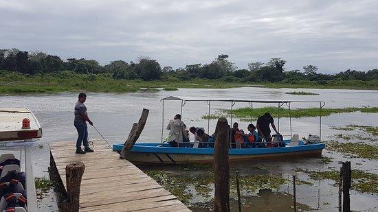 Cano Negro, Costa Rica: Boat operators