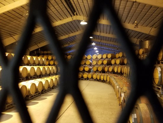 Rutherford, CA: Caymus Barrel Room.