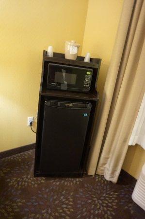 Dimondale, ميتشجان: Fridge and Microwave