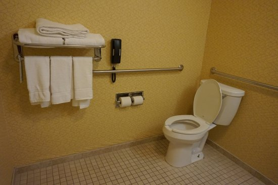 Dimondale, MI: Handicap room