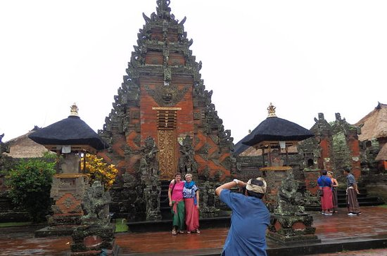 Ubud Art Village Day Tour