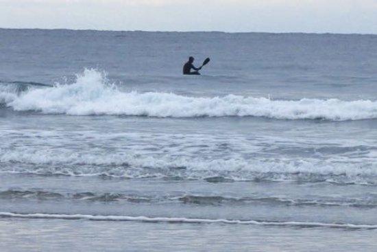 Ocean Village Beach Resort: Paddler surfing  on the waves, just off the beach