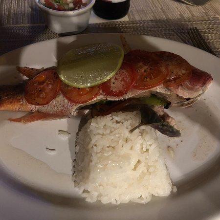 Salchi, Mexico: Fresh Red Snapper