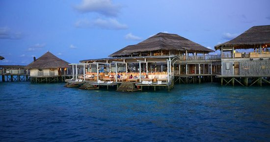 Olhuveli Island : Bar/Lounge