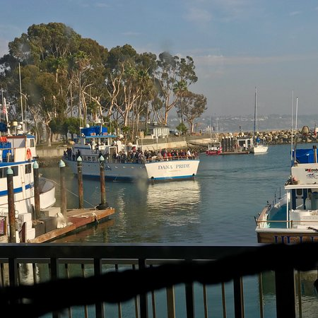 Turks Restaurant Dana Point Ca What A View Picture Of Turks