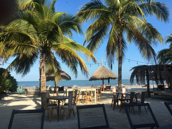 Holbox Hotel Casa las Tortugas - Petit Beach Hotel & Spa: view from breakfast table - all you see is part of hotel