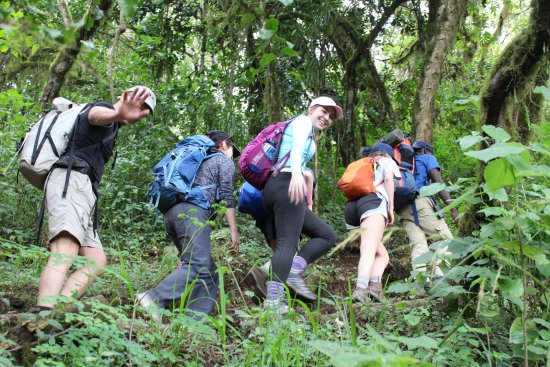 gregs family from chicago in the jungle picture of kilimanjaro