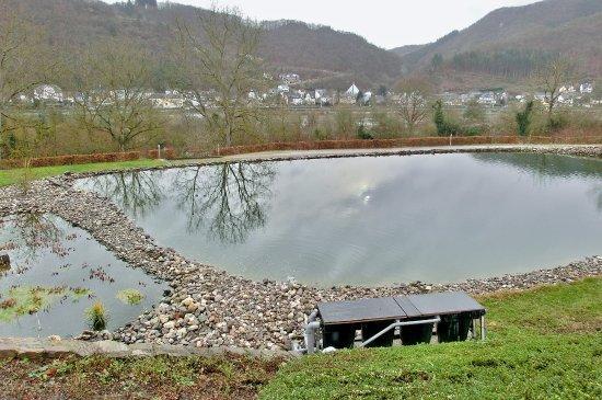 Lof, Németország: Teich auf dem Außengelände (Dez. 2017)
