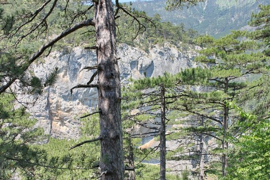 Uch-Kosh Gorge
