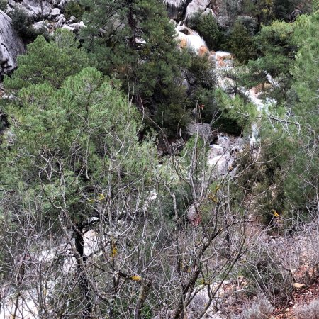 Parque Natural Sierra de Cazorla: photo0.jpg