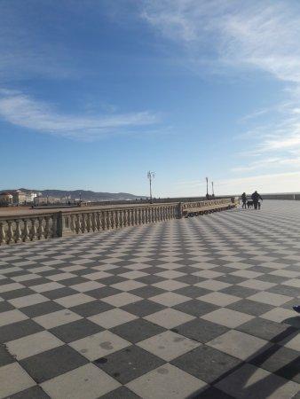 La terrazza!!! - Picture of Terrazza Mascagni, Livorno - TripAdvisor
