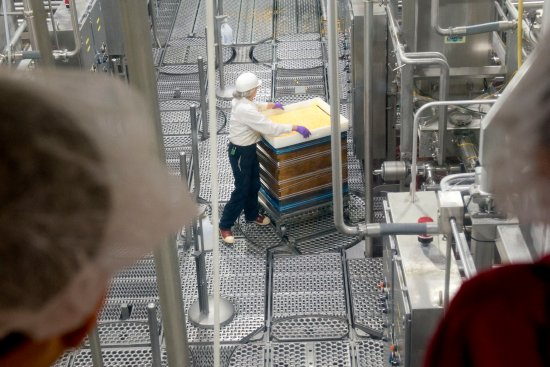 """Hilmar, CA: Watch employees package the """"Big Cheese"""" a 640 lb. crate of cheese!"""