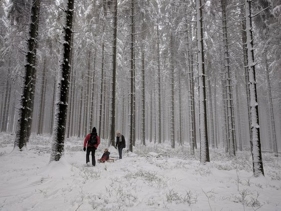 Baraque De Fraiture Photo De Center Parcs Les Ardennes Vielsalm Tripadvisor