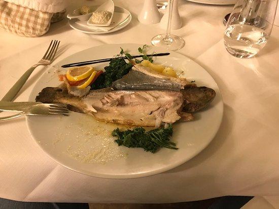 Lenzkirch, ألمانيا: trout