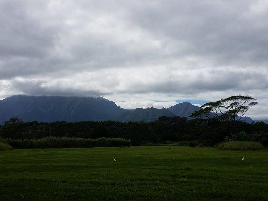 Kilauea, ฮาวาย: 20171230_134928_large.jpg