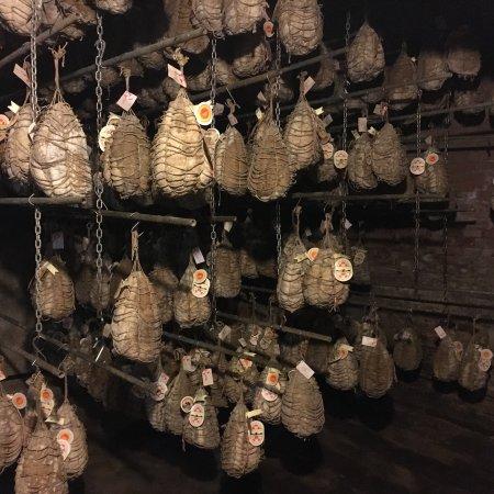 Azienda Agricola Bre del Gallo