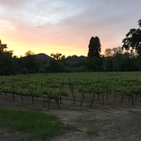 Forestville, Californien: My May 2017 stay - heaven!