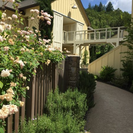 Forestville, CA: My May 2017 stay - heaven!