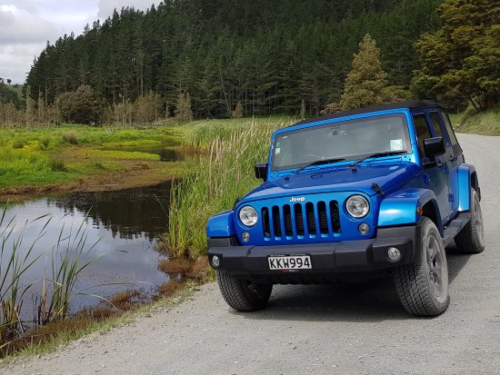 Paihia, Nowa Zelandia: Explore epic back country roads on your private Jeep tour.