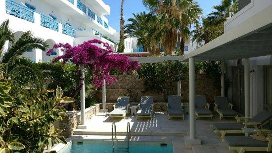 Afroditi Venus Beach Hotel & Spa: IMG-20180108-WA0046_large.jpg