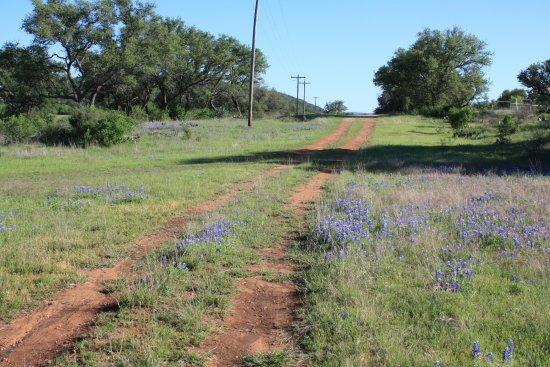 Llano Foto