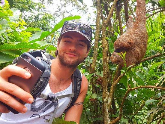 Playas del Coco, Costa Rica: Sloth Discovery Volcano Adventure