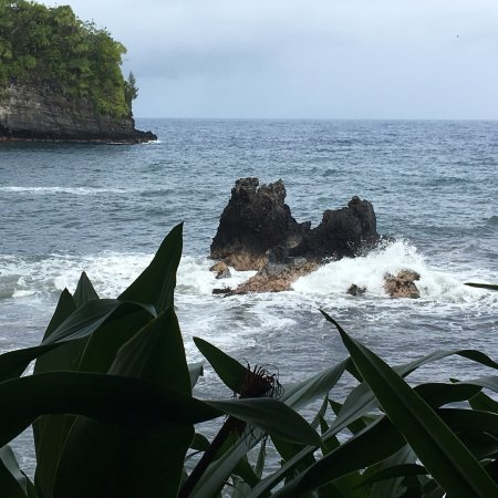 Hawaii Tropical Botanical Garden: photo0.jpg