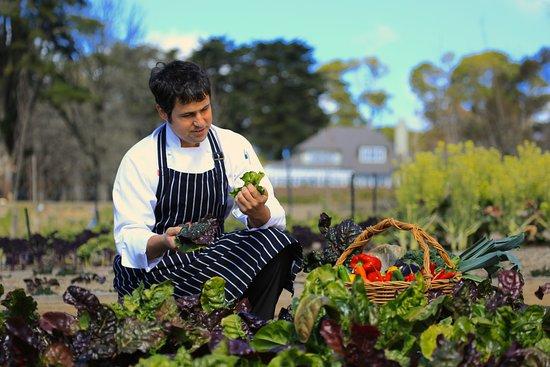 Blackheath, Australien: Chefs garden