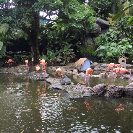 Batu Secret Zoo (Jawa Timur Park 2)