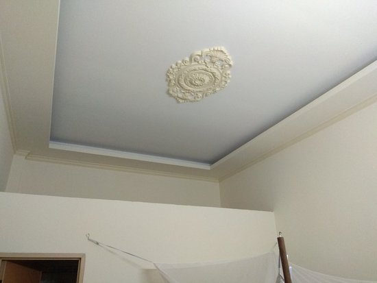 Clean High Ceiling Ac Mosquito Net